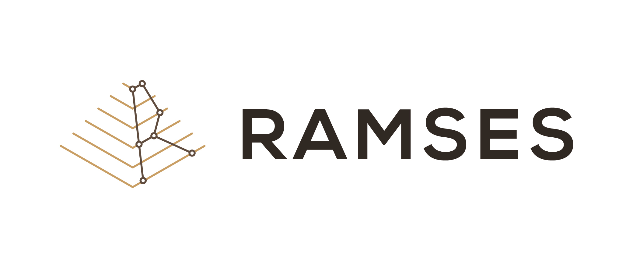 RAMSES: Malware analysis for digital forensics
